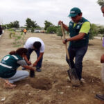 Sullana: Adolescentes en conflicto con la ley producirán plantones forestales