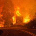 Portugal: Incendio forestal sin control deja 64 muertos y 135 heridos (VIDEO)