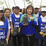Día Mundial del Medio Ambiente: Siembran 1,500 árboles en Villa María del Triunfo