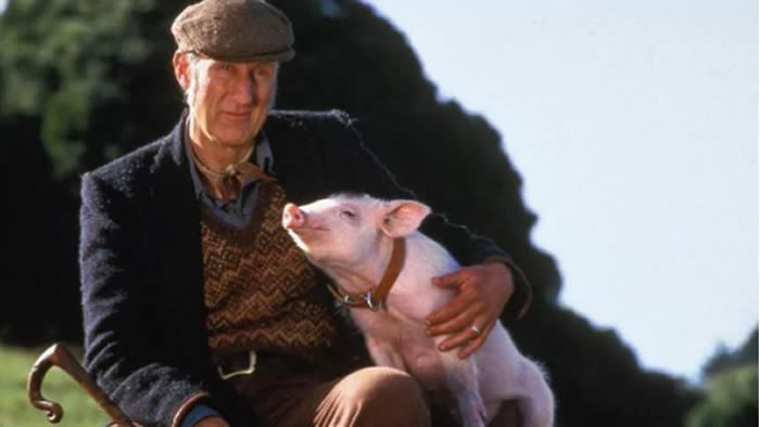 Arrestan a James Cromwell en una protesta animalista