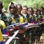 ONU ayudará a exguerrilleros de las FARC reintegrarse a la vida civil (VIDEO)