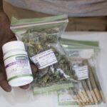 Defensores de DDHH celebran inicio de venta de marihuana legal en Uruguay