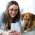 La sociabilidad de los perros está en sus genes