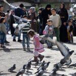 Ningún muerto en los ocho primeros días de tregua en el sur de Siria