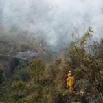 Indeci: Incendio forestal afecta más de 50 hectáreas en comunidades cusqueñas
