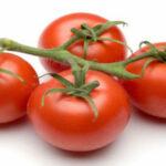 Descubren que extracto de tomate rojo revierte inflamación de la próstata