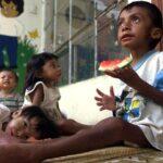 FAO advierte de problemas con los alimentos en Latinoamérica desde el 2030