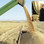 """Venezuela: Rusia suministrará trigo al país para vencer """"guerra del pan"""""""