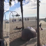 EEUU: Evacúan el muelle de Santa Mónica por una amenaza de bomba (VIDEO)