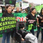 Marihuana medicinal: Comisión del Congreso aprueba proyecto de legalización