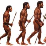 Nuevo estudio sitúa el origen del Homo Sapiens 350,000 años atrás