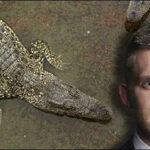 Sri Lanka: Horroroso ataque mortal de cocodrilo a periodista británico (VIDEO)