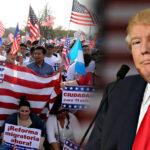 EEUU: Corte Federal rechaza criterios de restricción migratoria de Trump