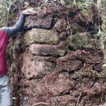 Evalúan acciones ante descubrimiento de nueva ciudadela prehispánica
