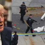 Ataque terrorista en Nueva York : Trump ordena reforzar control migratorio
