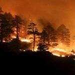 EEUU: Incendios forestales dejan 15 muertos, 150 desaparecidos y 20.000 evacuados