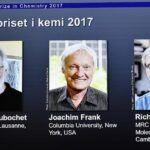 Nobel de Química para tres investigadores de microscopía biomolecular