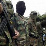 Colombia: Disidentes de las FARC matan a 4 civiles que erradicaban cocales