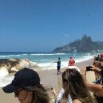 Brasil: Mar vara ballena muerta de 30 toneladas en la playa de Ipanema
