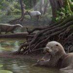 Identifican nutria de 6 millones de años que tuvo el tamaño de un lobo