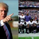 EEUU: Trump recrudece ataques contra jugadores de la Liga Nacional de Fútbol, NFL