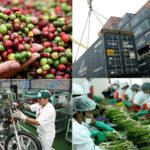 El comercio internacional de Perú supera los 68.000 millones de dólares en 2017
