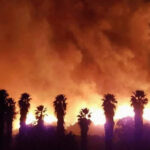 Más de 6.000 bomberos combaten dantesco incendio forestal en California (VIDEO)