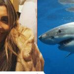 Costa Rica: Tiburón mata a ejecutiva de Wall Street que buceaba con amigos (VIDEO)
