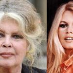 Brigitte Bardot: Muchas actrices seducen a productores para tener un papel