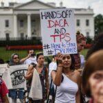 """La Casa Blanca dispuesta a revisar nuevo plan para proteger a """"Dreamers"""""""