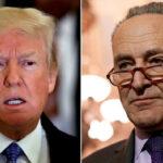 Trump invitó al líder demócrata del Senado a negociar sobre cierre de Gobierno (VIDEO)