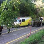 México: Hallan otros 9 cuerpos descuartizados en una camioneta (VIDEO)