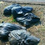 México: Sicarios arrojan a carretera bolsas con 4 cadáveres descuartizados