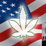EEUU: La marihuana se abre paso pese a las amenazas de Donald Trump