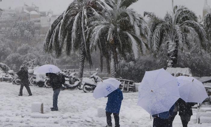 ¡Histórico! Por primera vez en 30 años nevó en la Florida