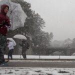 Cancelan vuelos y trenes por mayor nevada en cuatro años en el Japón