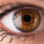Terapia que cura ceguera sale al mercado por 850,000 dólares por tratamiento