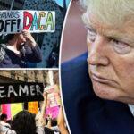 Trump propone acuerdo de 2 fases para solucionar problema de los dreamers