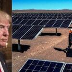 """Trump asesta nuevo """"golpe tributario contra la industria de energía renovable"""