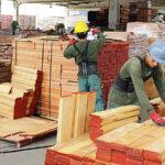 Adex: Crear más mesas sectoriales para apuntalar al crecimiento del país