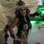 Carnaval de Río: Escuelas abordan problemas y critican autoridades (FOTOS)