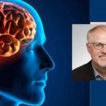 Físicos y biólogos ven por 1ra. vez todas las células de una región cerebral