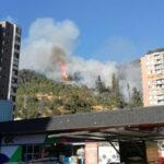 Chile: Incendio forestal en cerro San Cristóbal moviliza a decenas de bomberos