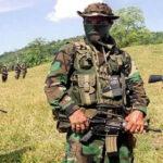 Colombia: Disidentes de las FARC matan niña por intentar asesinar a capo del Clan del Golfo (VIDEO)