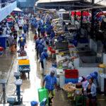 Terminal pesquero del Callao comercializará 500 toneladas de pescado por Semana Santa