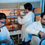 Científicos chilenos investigan pionera cura del cáncer con esponja marina
