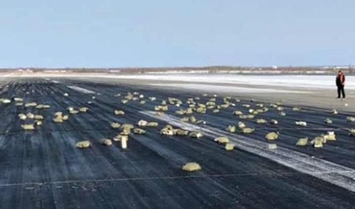 Lluvia de oro sorprende en Siberia