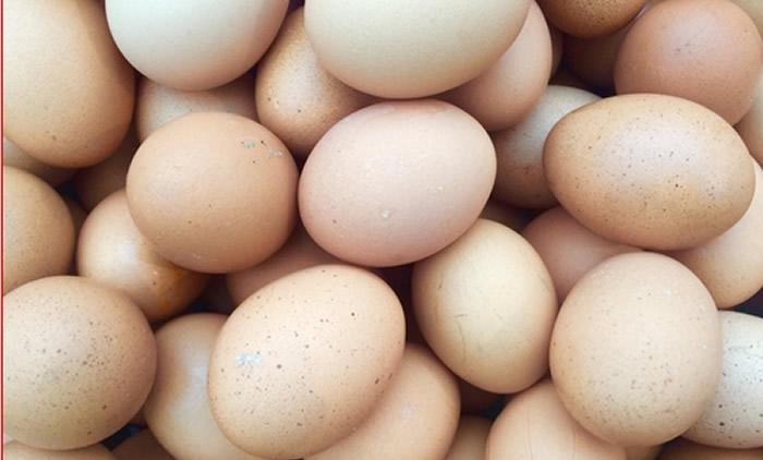Más de 200 millones de huevos retirados del mercado por salmonela