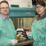 Equipo de investigadores simplifica diagnóstico de la hepatitis C