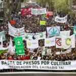 Multitudinaria marcha en Argentina para reclamar se regule uso de la marihuana